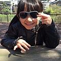 2060511_babiators太陽眼鏡-11.jpg