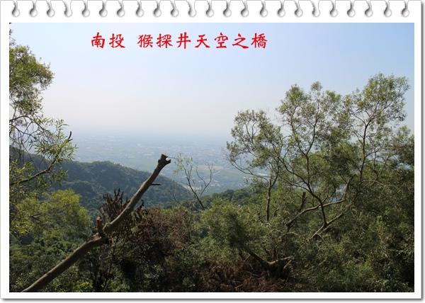 南投 猴探井天空之橋 06