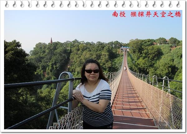 南投 猴探井天空之橋 15