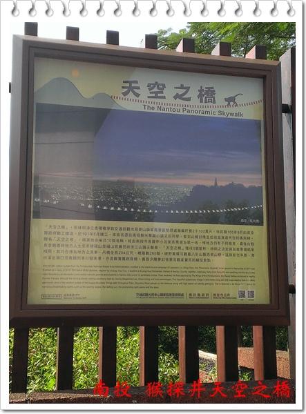 南投 猴探井天空之橋 20