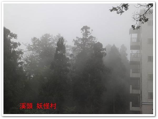 溪頭 妖怪村 06