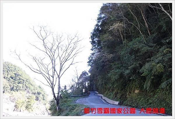 新竹雪霸國家公園 觀霧 05