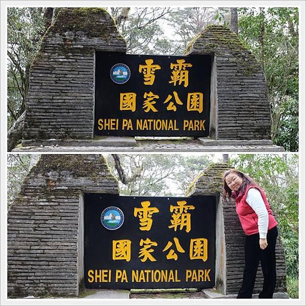 新竹雪霸國家公園 觀霧 18