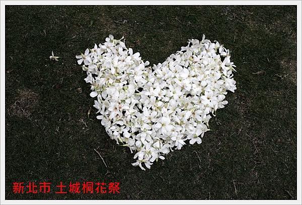 新北市土城桐花祭 15