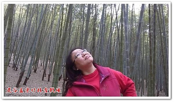 鹿谷孟宗竹林古戰場 09
