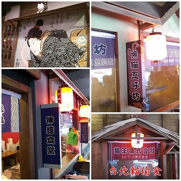 台北貓偷食 11