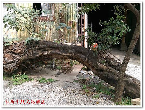 台南十鼓文化園區 05