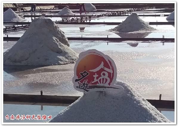 台南井仔腳瓦盤鹽田 15