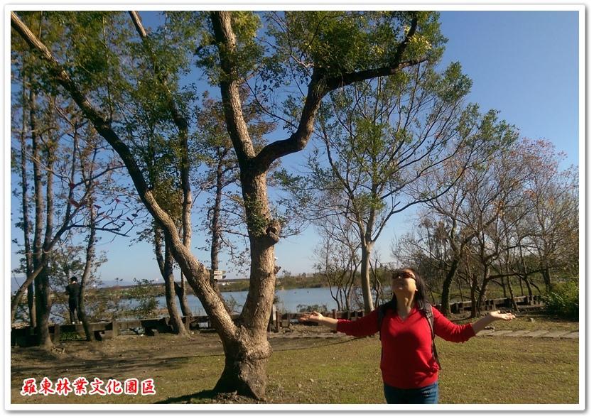 羅東林業文化園區 04