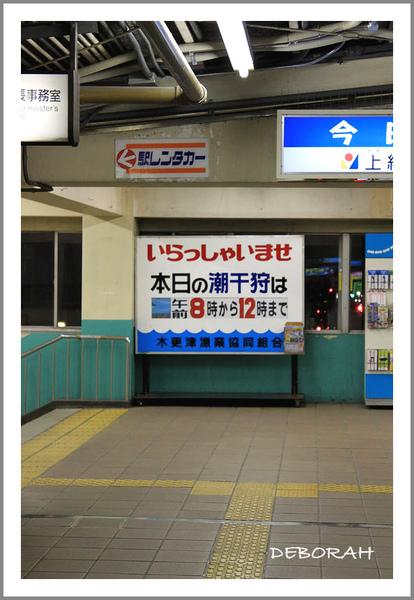 IMG_4261.jpg