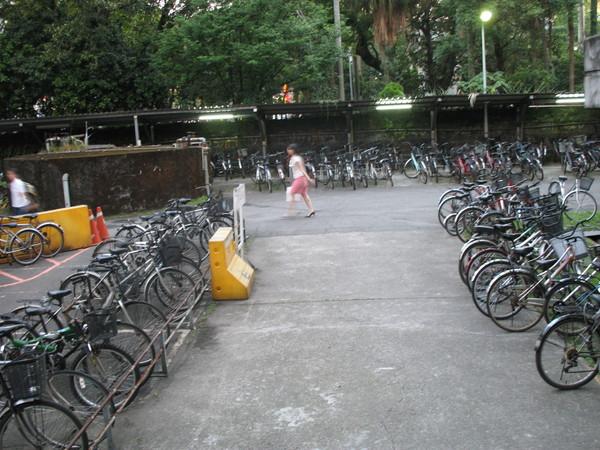 大門旁腳踏車林立 ^^