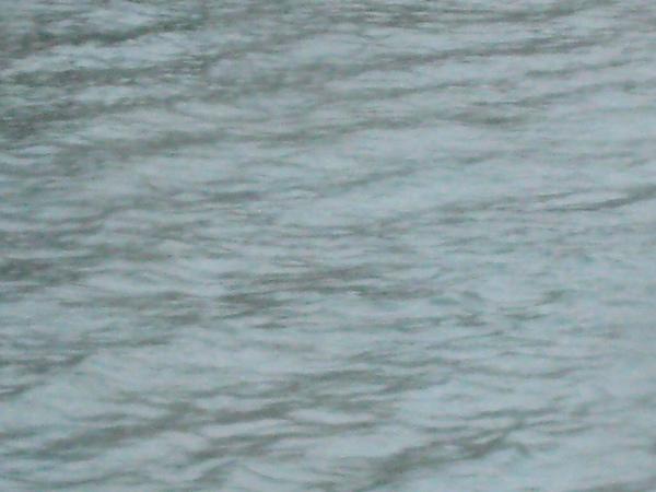 這就是萊因河水
