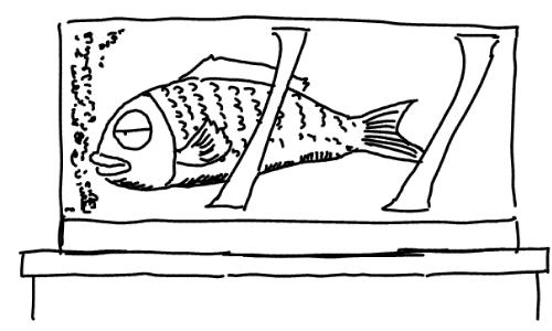 fish6_finish.jpg