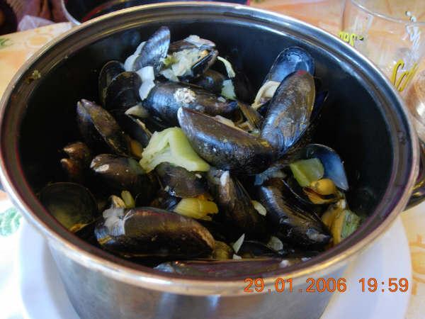 一鍋像蛤蜊的東西