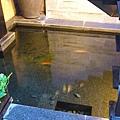 大廳旁的小魚池~