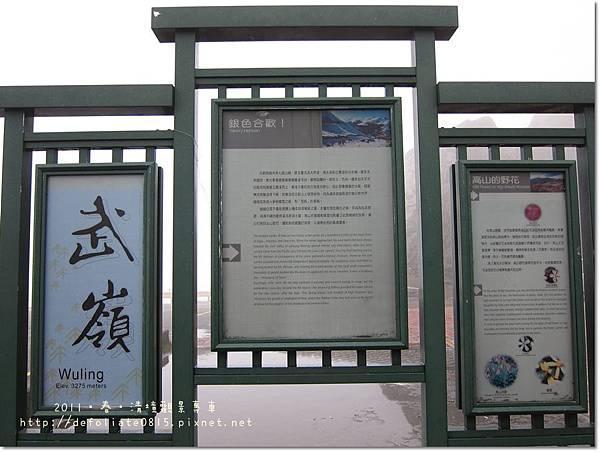 武嶺-6.JPG