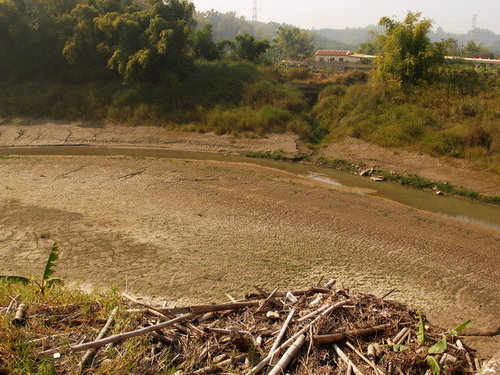枯水期的菜寮溪(2010.1)