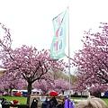 0417 Bonn Flohmarkt