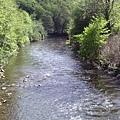 溪水看起來很乾淨
