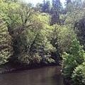 搭乘纜車過溪流~