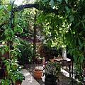 戶外的小庭園