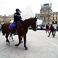 6-1 羅浮宮前遇到馬