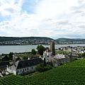 Rüdesheim 搭纜車上山