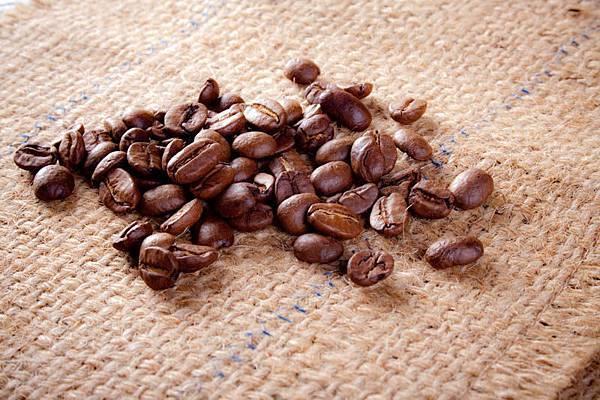 耶加雪菲Gr.2咖啡豆.jpg