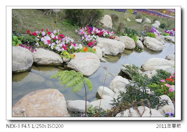 DSC01393.jpg