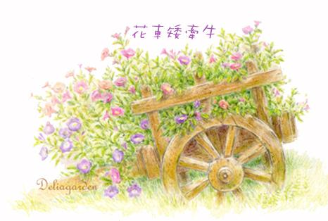 花車矮牽牛deliagarden