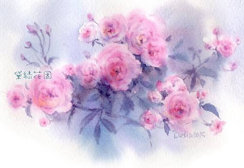 rose1deliagarden2015