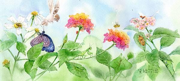 昆蟲放大鏡deliagarden2014