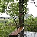 5.雨中小立deck.jpg