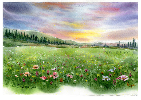 wildflower field.jpg