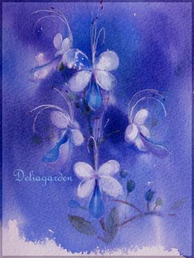 紫蝴蝶(窈如)s.jpg