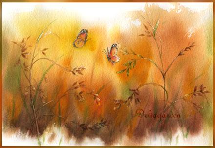 金色迷蝶.jpg