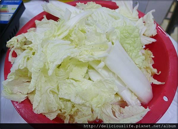 大白菜28MOP