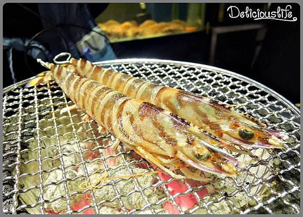 特大明蝦1