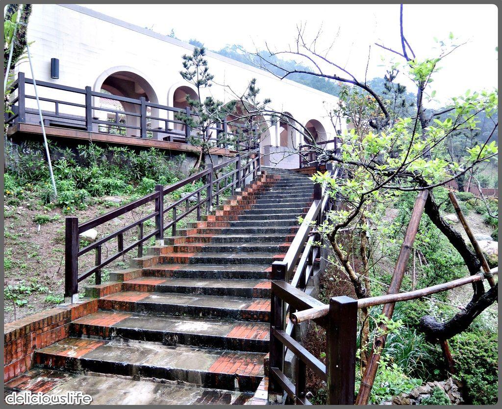 台北找茶園-6