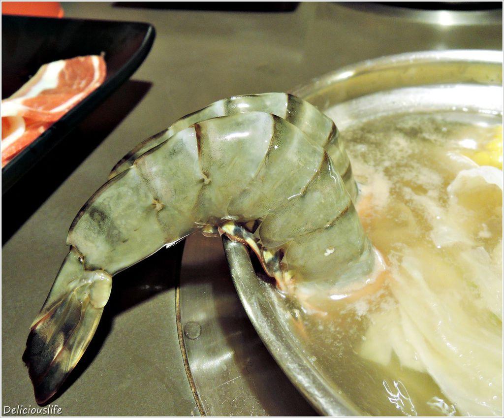 野生草蝦王599-7