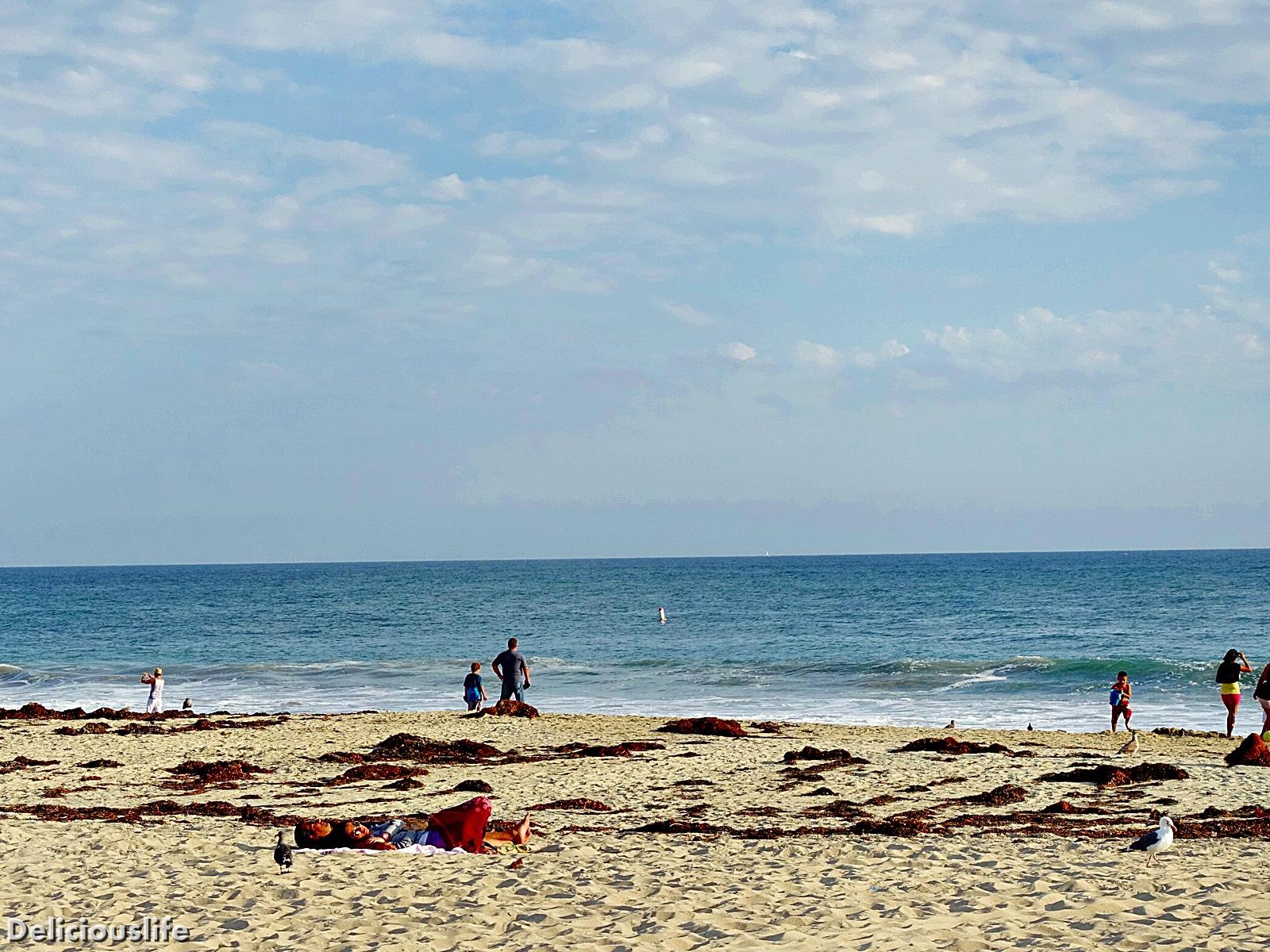 laguna beach-4
