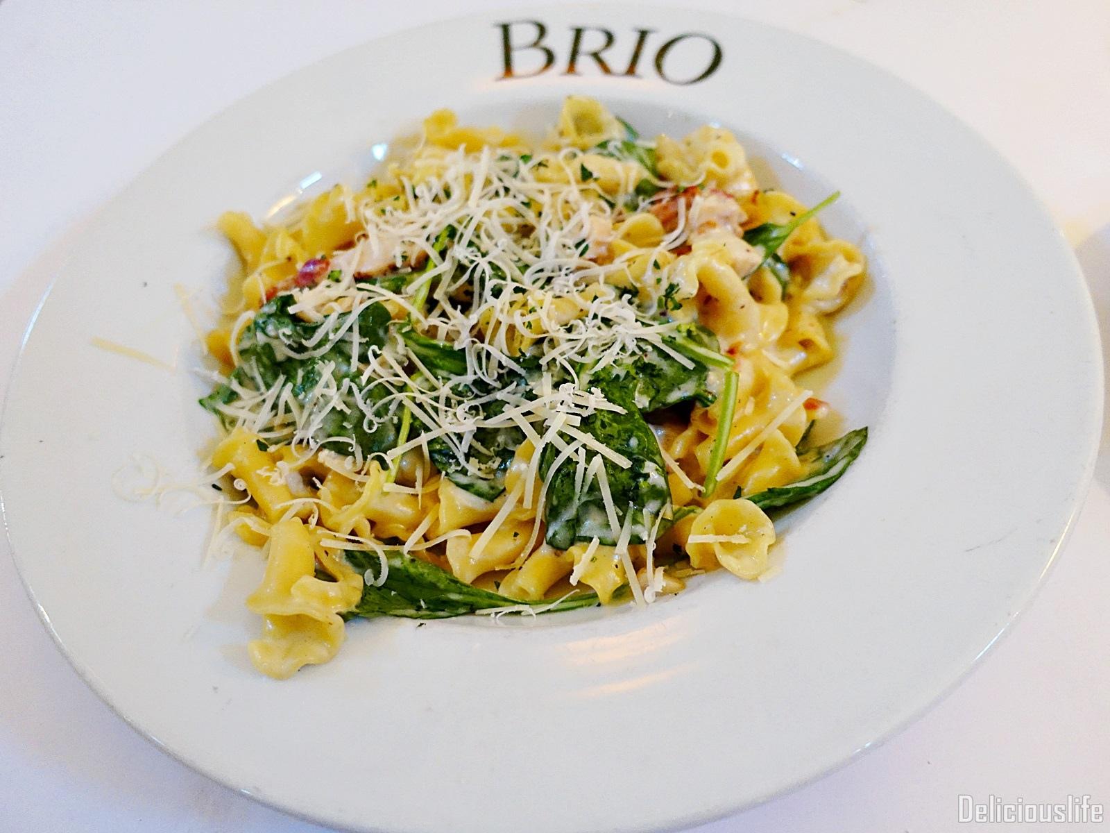 Brio-10