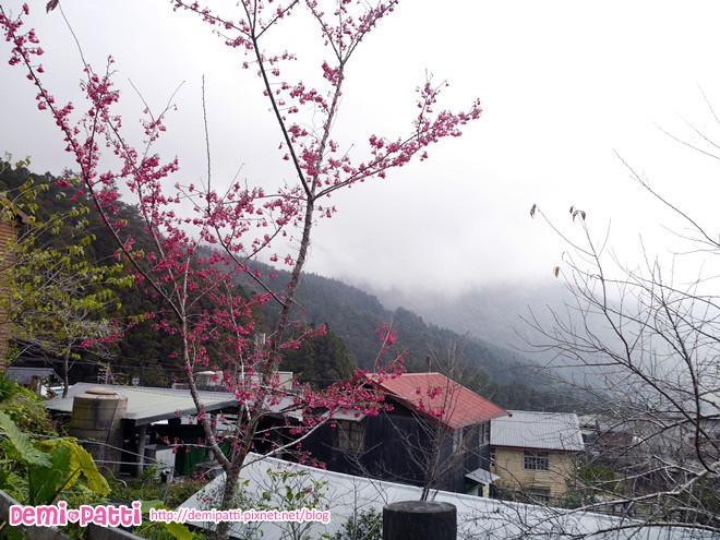 奮起湖 (4).jpg