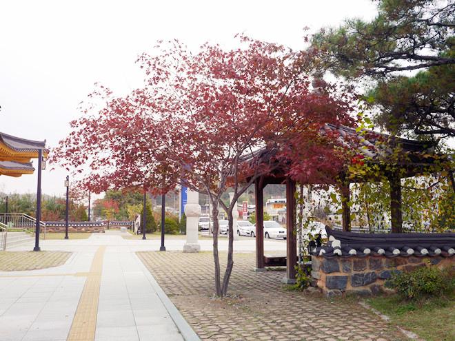 韓國 江村鐵道腳踏車 강촌레일바이크 (9).jpg