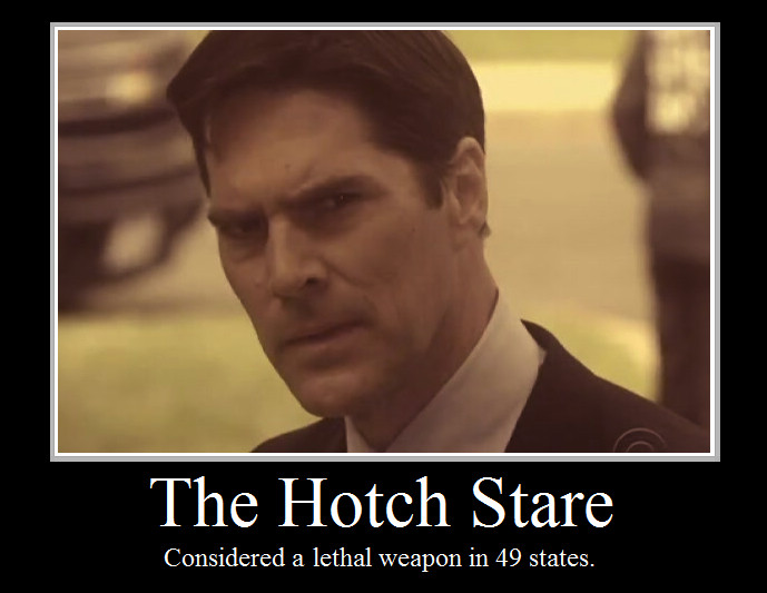 The_Hotch_Stare_by_BrRaInFrEeZe.jpg
