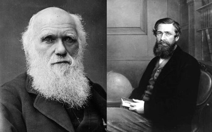 darwin vs. wallace