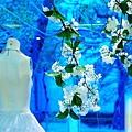Vincent&Irene結婚之喜0032.jpg