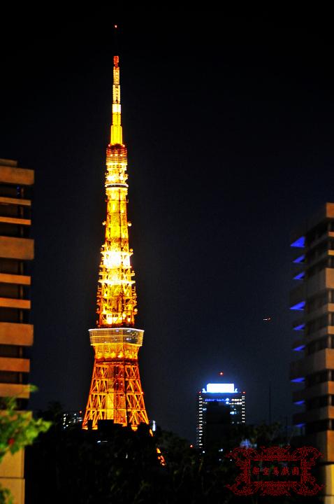 2009関東行一日目197.jpg
