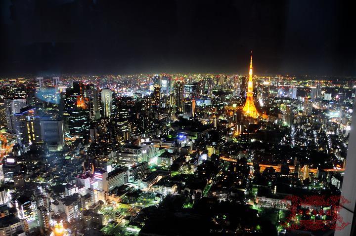 2009関東行一日目208.jpg