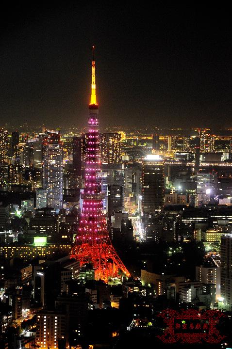 2009関東行一日目268.jpg